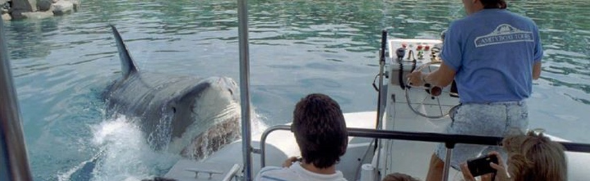JAWS attacks 1990